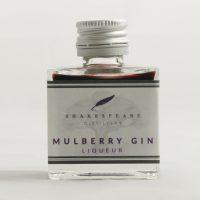 Mulberry Gin Miniature