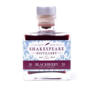 Blackberry Gin 20cl